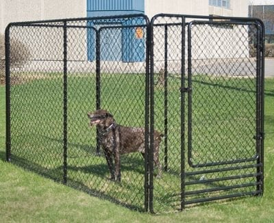 Chain link fence for dog cage
